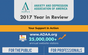 ADAA 2017 Year in Review Cropped_0.png